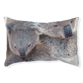 Cute Fluffy Grey Koalas Small Dog Bed