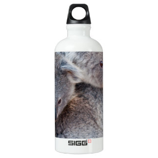Cute Fluffy Grey Koalas Water Bottle