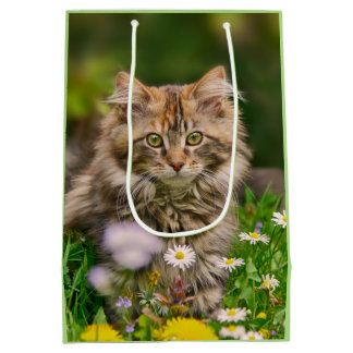 Cute Fluffy Maine Coon Kitten Cat in Flowers Photo Medium Gift Bag