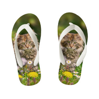 Cute Fluffy Maine Coon Kitten Cat Pet Photo - Kids Kid's Flip Flops