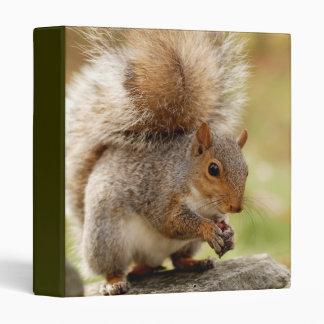 "Cute Fluffy Squirrel 1"" Photo Album Binder"