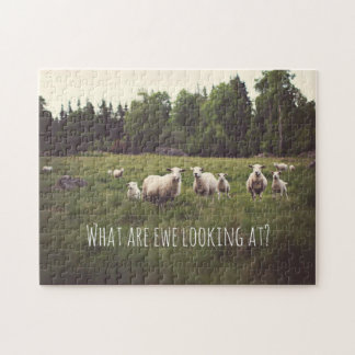 Cute Fluffy White Sheep & lambs in pasture photo Jigsaw Puzzle