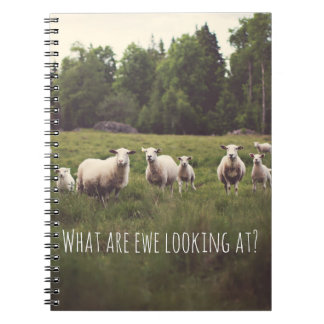 Cute Fluffy White Sheep & lambs in pasture photo Notebook