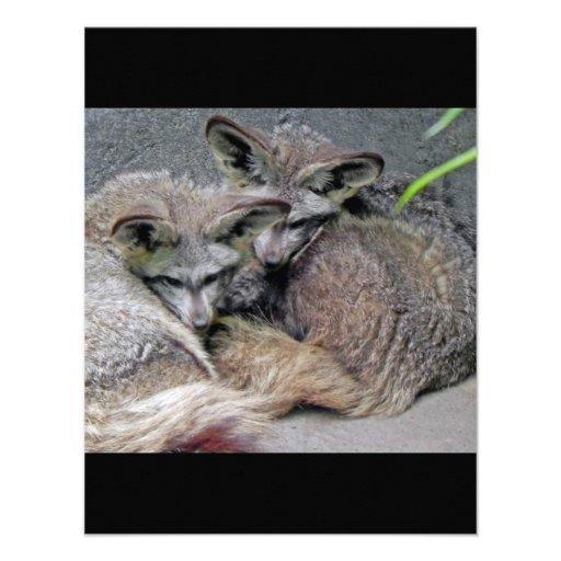 Cute Fox Couple Sleeping Photo Custom Announcement