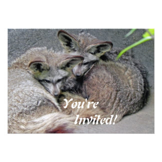 Cute Fox Couple Sleeping Photo Personalized Announcements