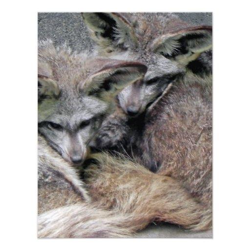 Cute Fox Couple Sleeping Photo Personalized Invitation