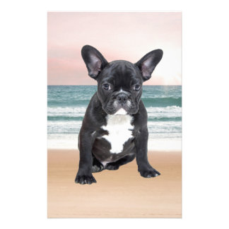 Cute French Bulldog Beach Sun Water Stationery Design