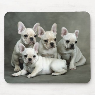 Cute French Bulldog Puppy Dog Mousepad