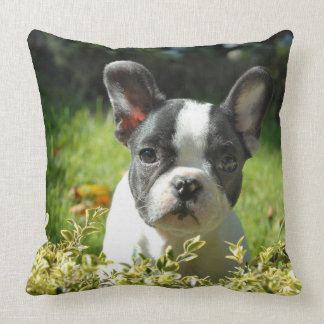 Cute French Bulldog Puppy Throw Pillow