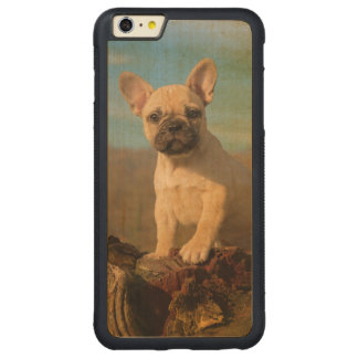 Cute French Bulldog puppy, vintage Carved® Maple iPhone 6 Plus Bumper Case