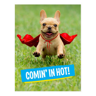 Cute French Bulldog Superhero Runs in Grass Postcard