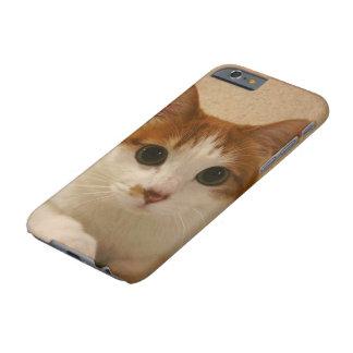 Cute Funny Animal Cat iPhone 6s Hard Case