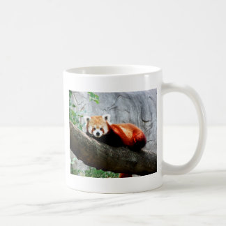 cute funny animal red panda coffee mug