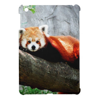 cute funny animal red panda iPad mini cover