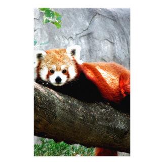 cute funny animal red panda stationery