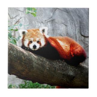 cute funny animal red panda tiles