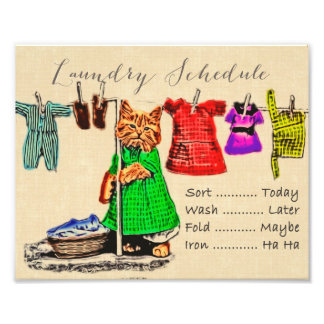 Cute Funny Cat Laundry Schedule Sign Wall Art Photo