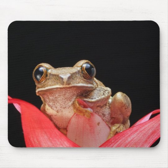 Cute, Funny Frog Holding onto Lily - Mouse Pad