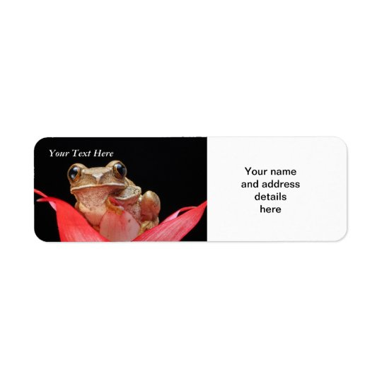 Cute, Funny Frog in Lily RAL Template