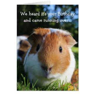 Cute Funny Guinea Pig Birthday Card
