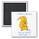 Cute Funny Squirrel Fridge Magnet