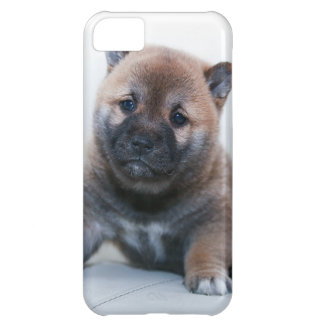 Cute Fuzzy Puppy Dog Cover For iPhone 5C