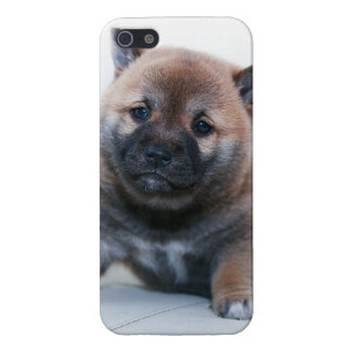 Cute Fuzzy Puppy Dog iPhone 5 Cover