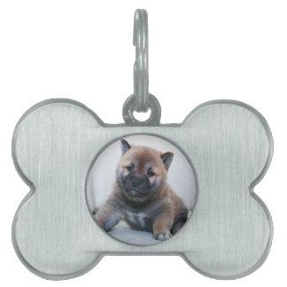 Cute Fuzzy Puppy Dog Pet Tag