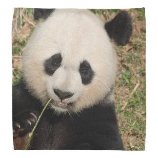 Cute Giant Panda Bear Bandanas