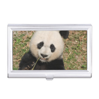 Cute Giant Panda Bear Case For Business Cards
