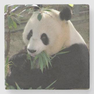 Cute giant panda bear stone coaster