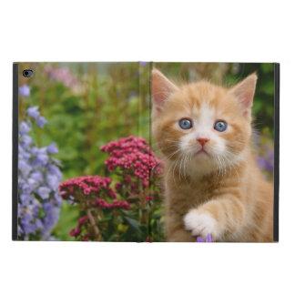 Cute Ginger Cat Kitten in a Garden, hardcase