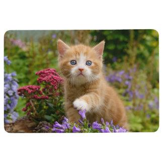 Cute Ginger Cat Kitten in a Garden Photo - ground Floor Mat