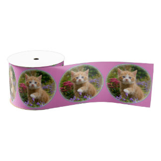 Cute Ginger Cat Kitten in a Garden Portrait Photo Grosgrain Ribbon