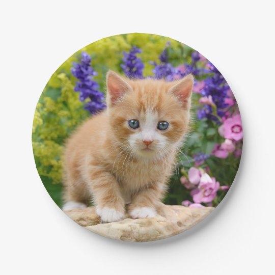Cute Ginger Cat Kitten in Flowers - Funny Party 7 Inch Paper Plate