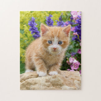 Cute Ginger Cat Kitten in Flowery Garden _ Game Jigsaw Puzzle