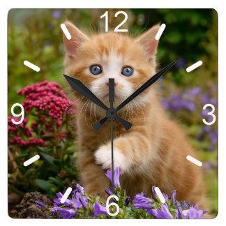 Cute Ginger Cat Kitten in Garden Photo  dial-plate Wallclock