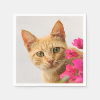 Cute Ginger Cat Kitten Watching Eyes Head Photo -- Paper Napkin