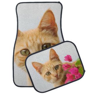 Cute Ginger Cat Kitten Watching You, floor-mats Car Mat