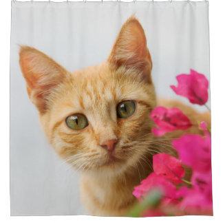 Cute Ginger Kitten Portrait, Tub