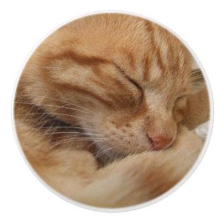 Cute Ginger Orange Cat Dresser Knobs Ceramic Knob