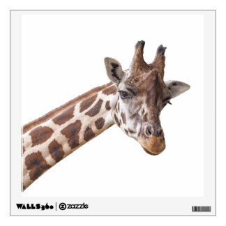 Cute Giraffe Animal Wall Sticker