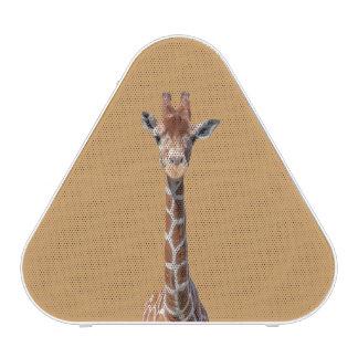 Cute giraffe face speaker