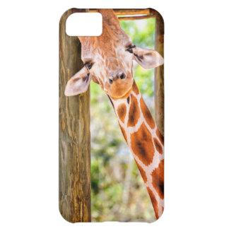 Cute Giraffe iPhone 5C Cases