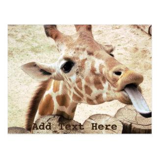 Cute Giraffe Licking Postcard