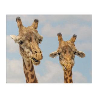 Cute giraffes acrylic wall art