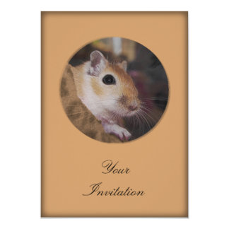 Cute Golden Pet Gerbil Card