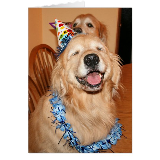 Cute Golden Retriever Birthday Wishes Card