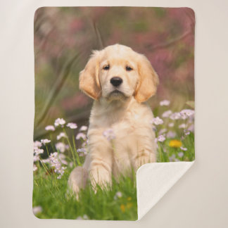 Cute Golden Retriever Dog Puppy Face Animal Photo Sherpa Blanket