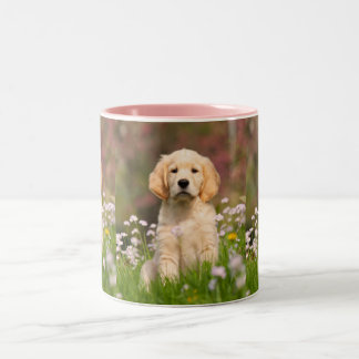 Cute Golden Retriever Dog Puppy Photo Pet Portrait Two-Tone Coffee Mug